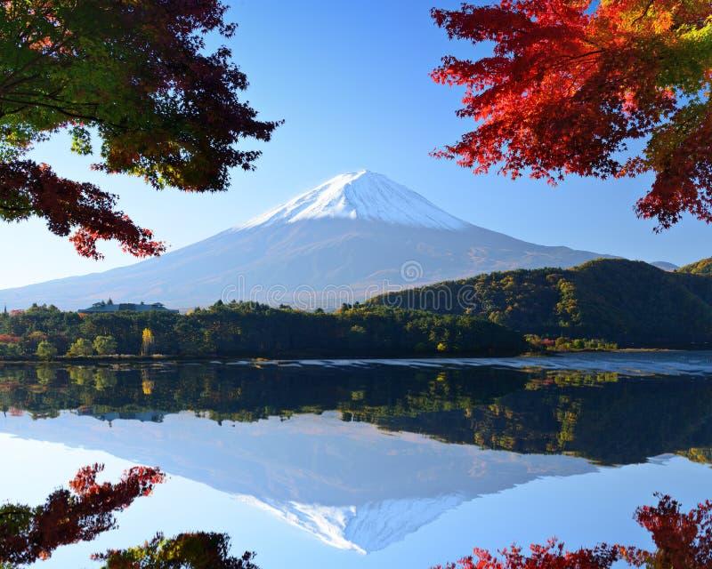 Mount Fuji i hösten royaltyfria bilder