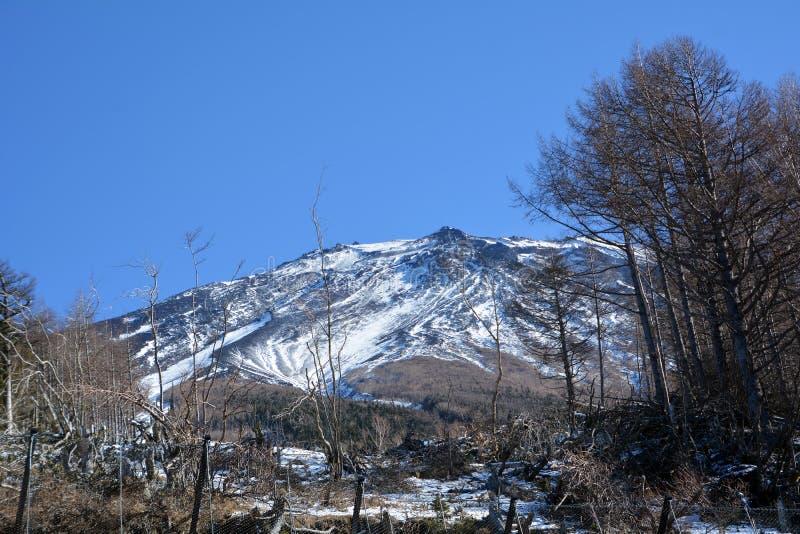 Mount Fuji i morgonen japan royaltyfri fotografi