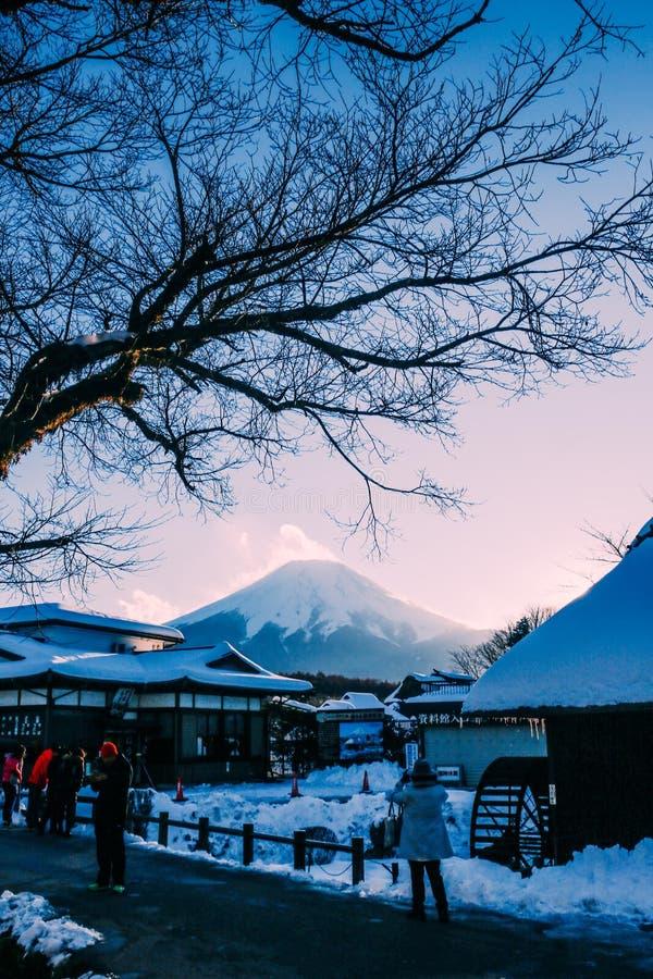 Mount Fuji Japan royaltyfri fotografi