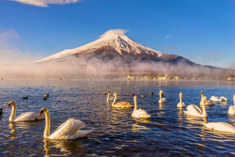 Mount Fuji, Japan. Mount Fuji reflected in Lake Yamanaka at dawn, Japan