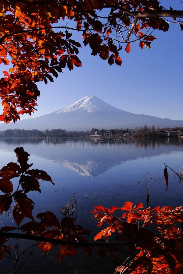 Mount Fuji Japanese iconic in autumn stock photography