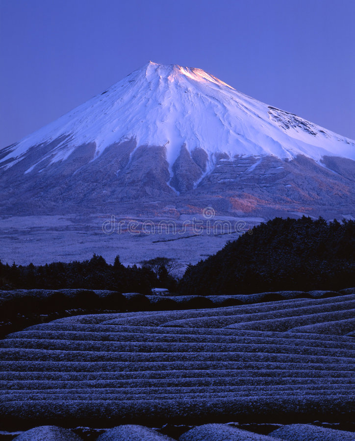 Mount Fuji LVI royalty free stock photos