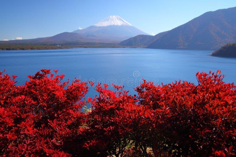 Mount Fuji och Lake Motosu arkivfoto