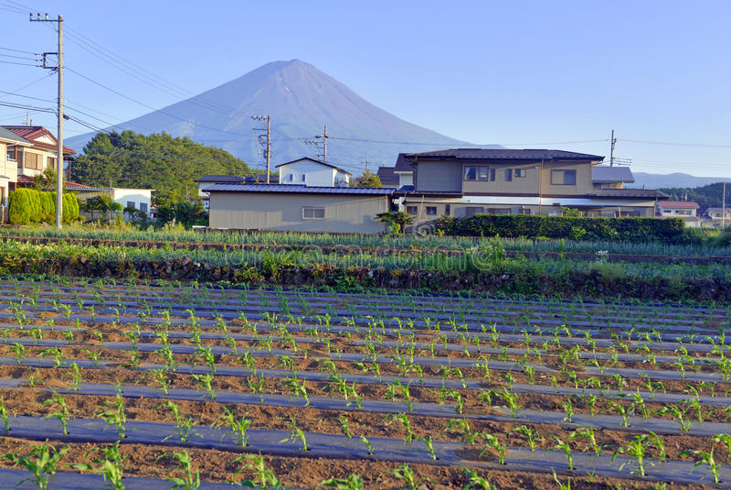 Mount Fuji som beskådat från lantlig stad i Japan royaltyfri bild