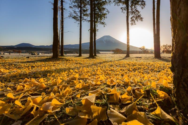Mount Fuji Sunrise. Mount Fuji Fujisan sunrise at Fumoto Japan stock image