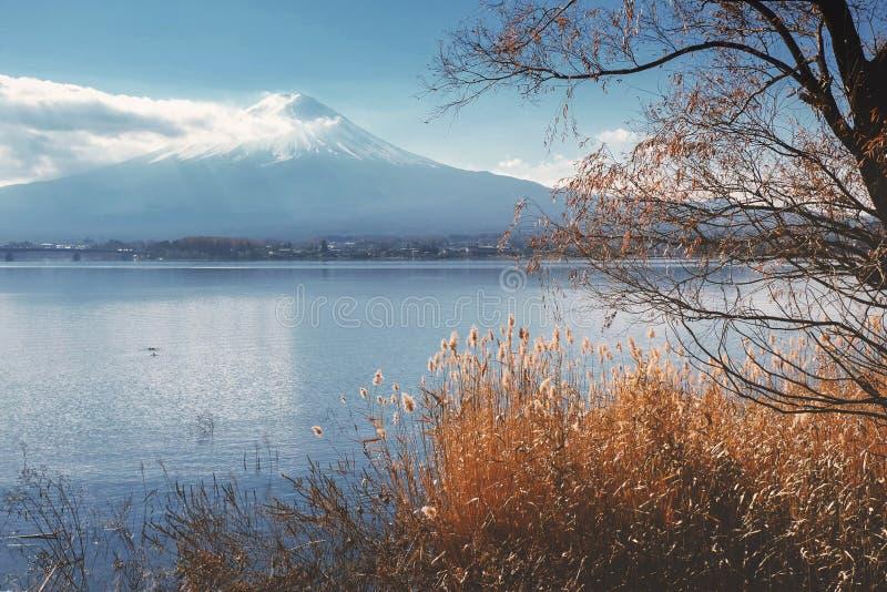 Mount Fuji view from around the Kawaguchi lake in Autumn royalty free stock photos