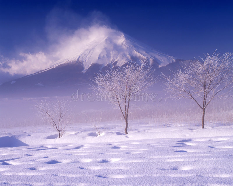 Mount Fuji X royalty free stock image
