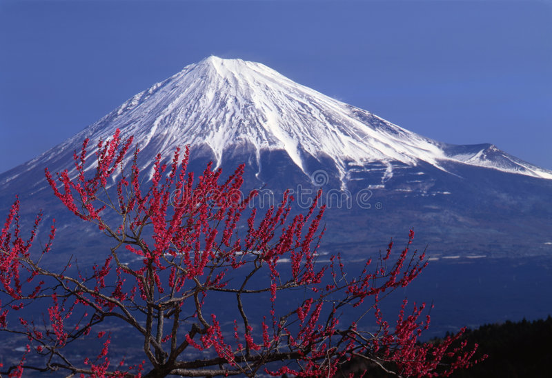 Mount Fuji XV royalty free stock images