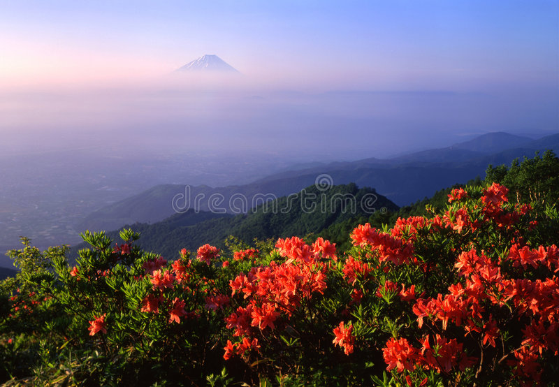 Download Mount Fuji XVI Royalty Free Stock Photos - Image: 1964558