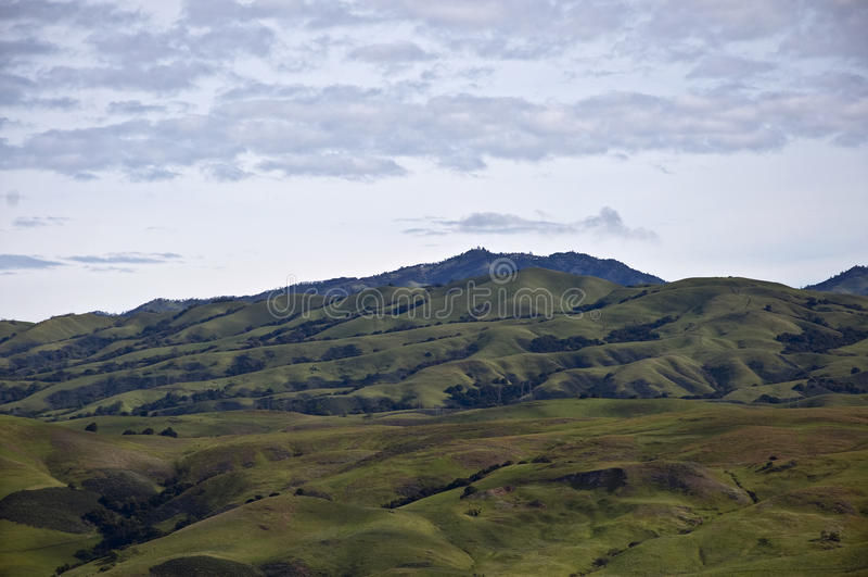 Mount Hamilton in Green stock photo