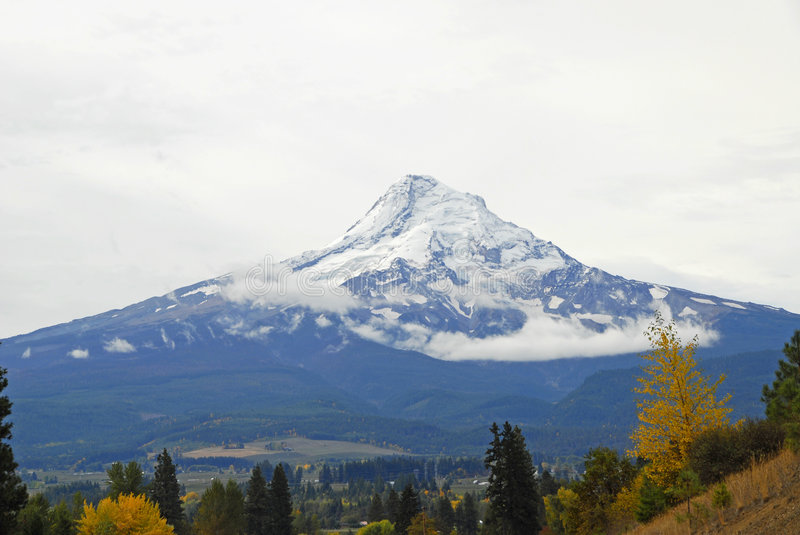 Download Mount Hood stock photo. Image of landscape, nature, volcano - 7078266