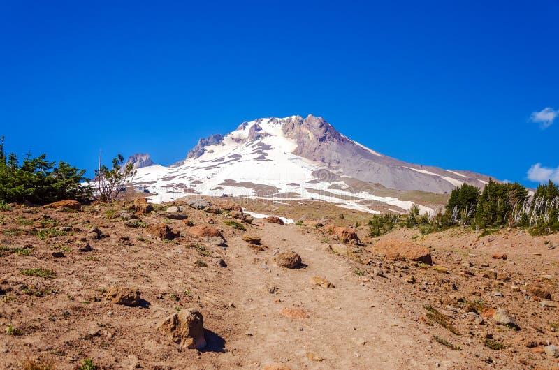 Mount Hood Peak stock photo