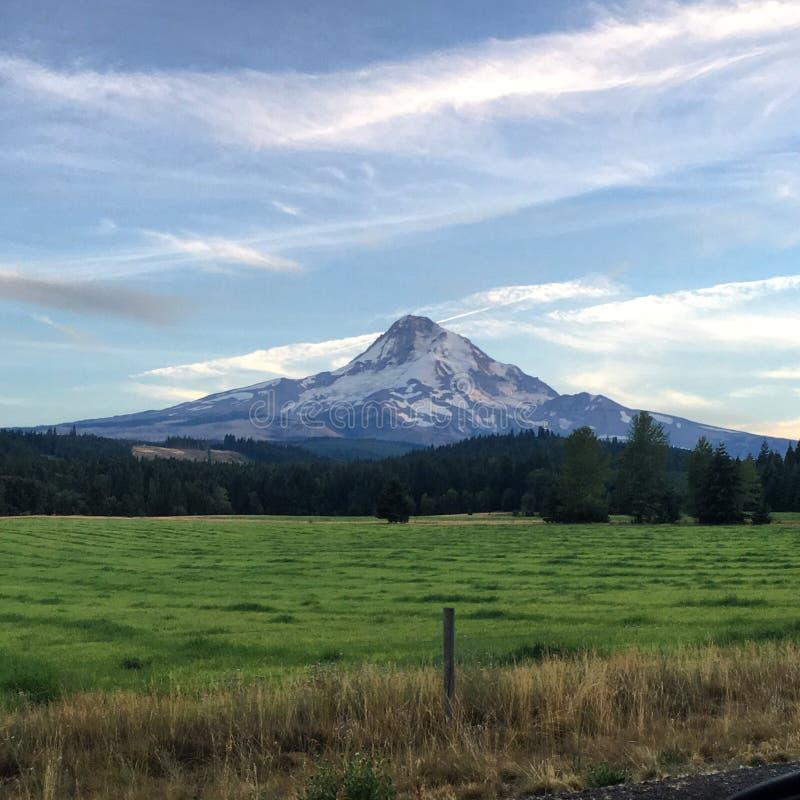 Mount Hood stock photography