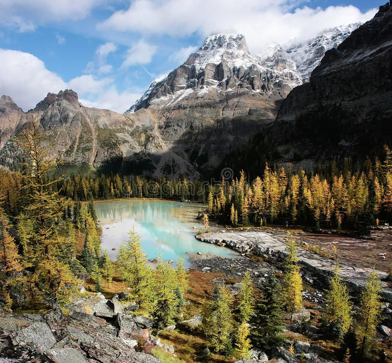 Mount Huber and Opabin Plateau, Yoho National Park, Canada royalty free stock image