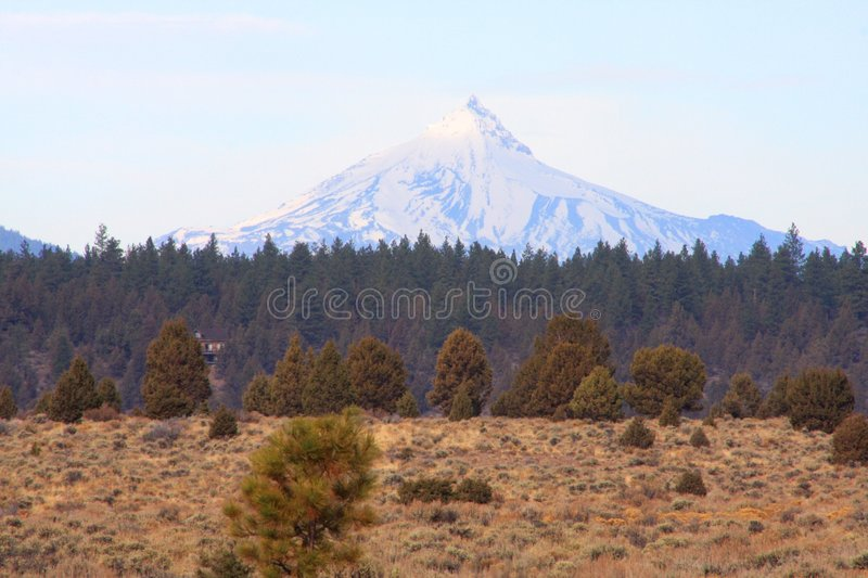 Mount Jefferson royalty free stock images