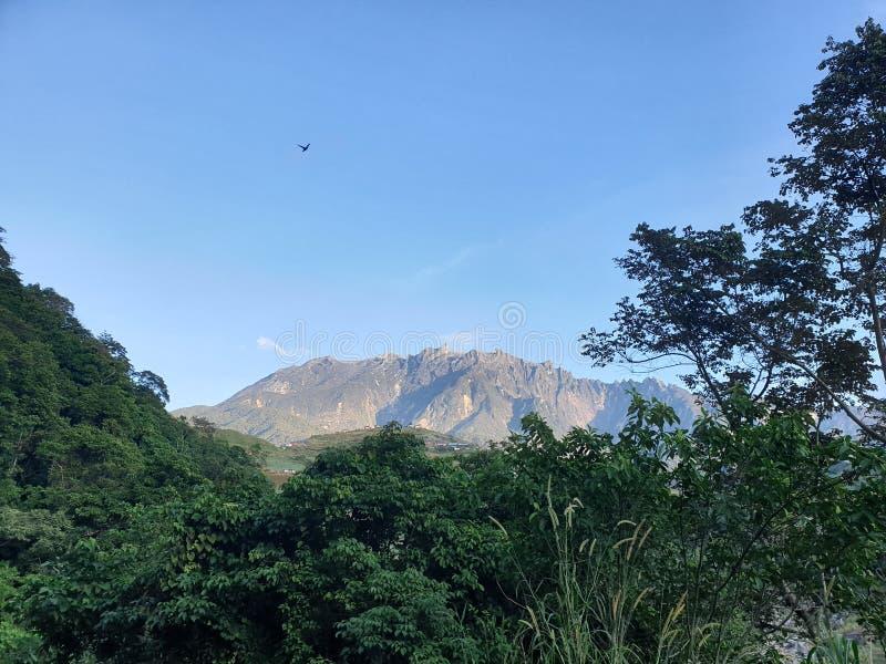 Mount Kinabalu sikt, Sabah, Borneo, Malaysia arkivbilder