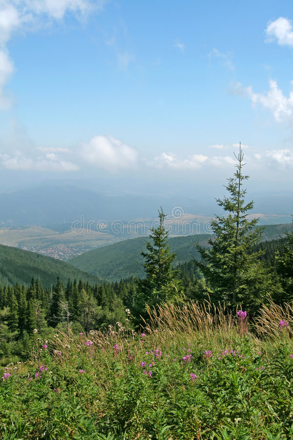 mount krajobrazowa zdjęcia royalty free