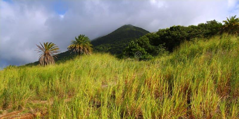 Mount Liamuiga in Saint Kitts stock image