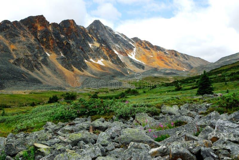 Mount Majestic Stock Image