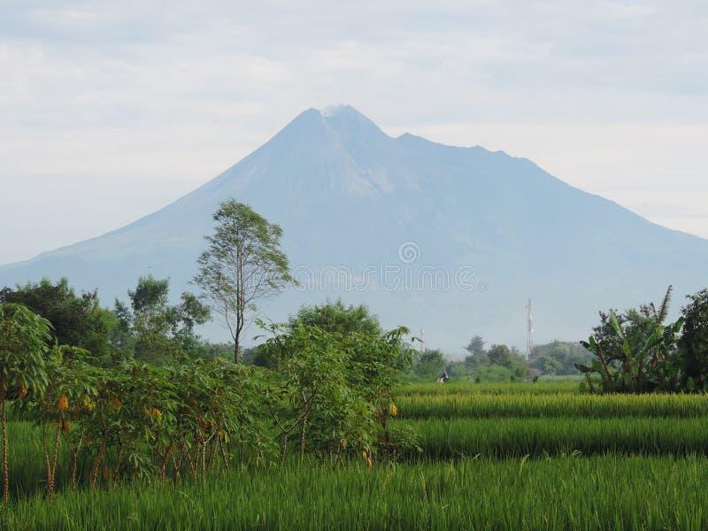 Mount Merapi Индонезия 9-ое марта 2016 стоковые фотографии rf