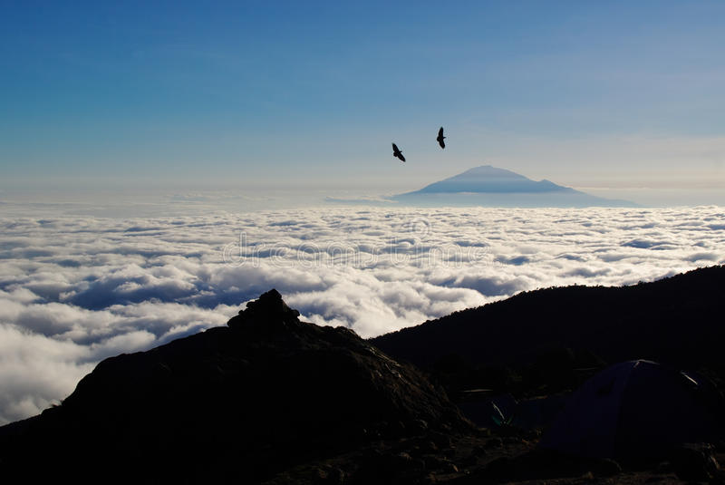 Mount Meru. From Kilimanjaro, crows flying royalty free stock images
