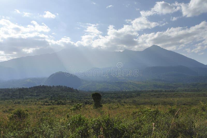 Mount Meru scenery. Landscape near Mount Meru in Tanzania (Africa stock photography