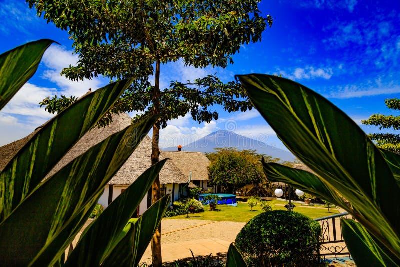 Mount Meru in Tanzania. Mount Meru is an active stratovolcano located 70 kilometres (43 mi) west of Mount Kilimanjaro in the nation of Tanzania stock image