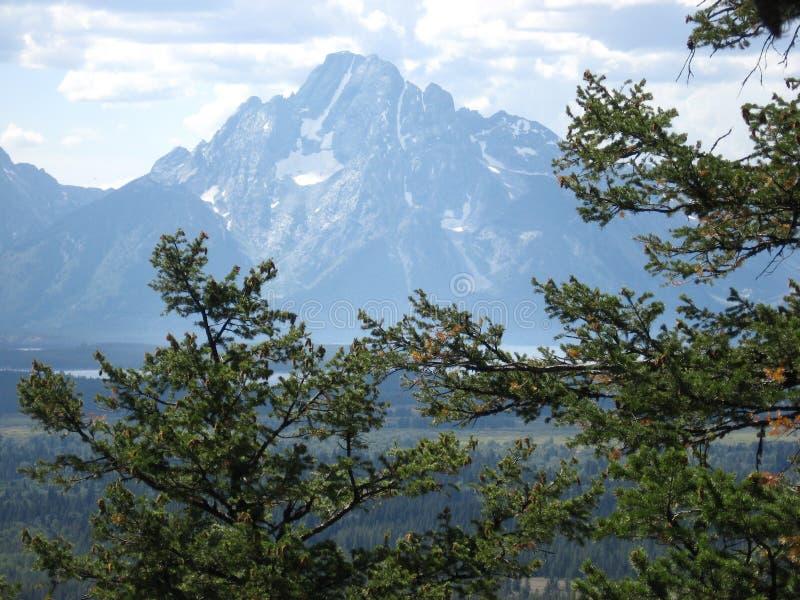 Mount Moran stock image
