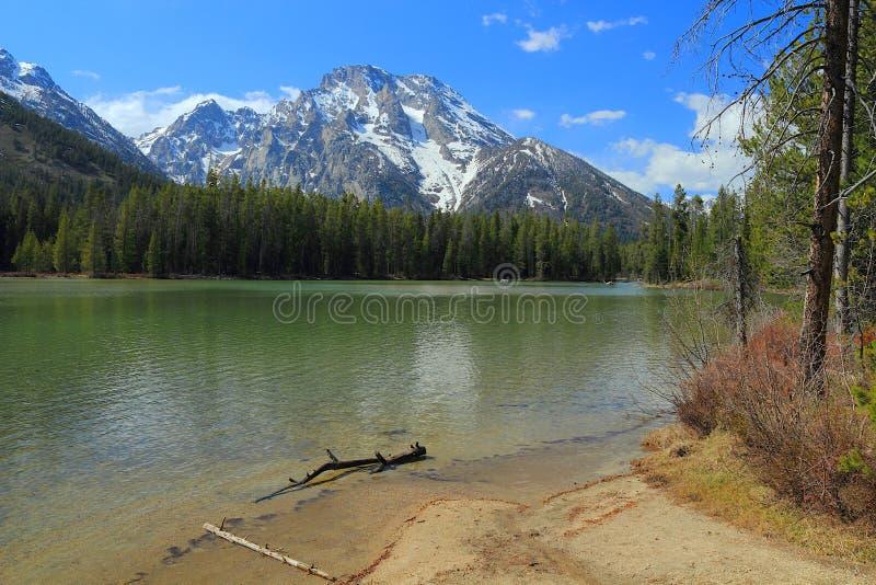 Mount Moran behind String Lake, Grand Teton National Park, Wyoming royalty free stock image