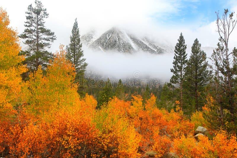 Mount Morgan royalty free stock photography