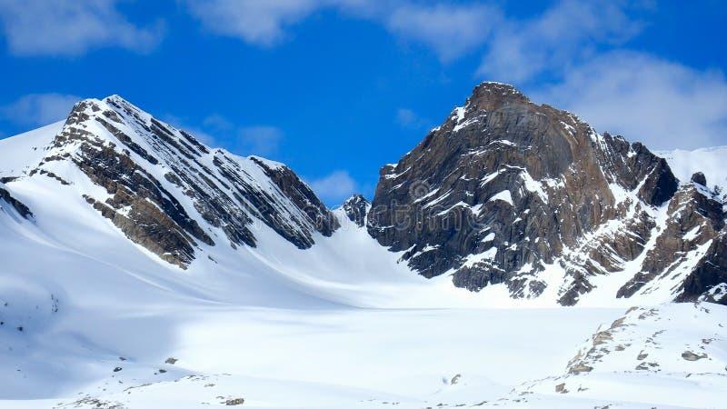 Mount Olive und Geier-Col. stockfotografie