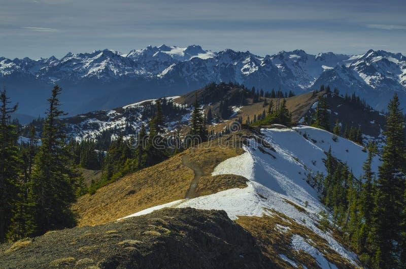 Mount Olympus view Washington state. Majestic, scenic Mt Olympus viewed from Klahane Ridge near Hurricane Ridge. Located in Olympic National Park, Washington stock image