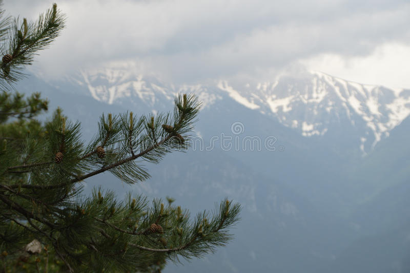 Mount Olympus. Which is situated in Greece is one of the attractive tourist destinations due to the mythology of the Greek gods, who allegedly put their homes royalty free stock image