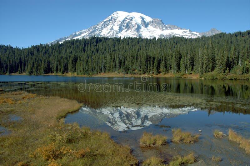 Mount Rainer, Washington royalty free stock images