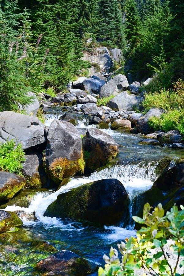Mount Rainier, река рая, водопад следа горизонта стоковое фото