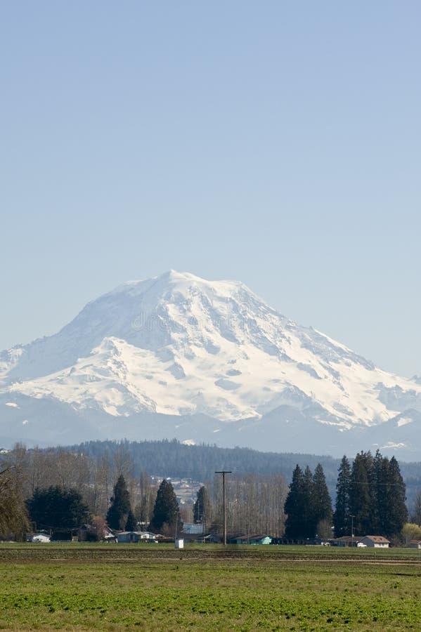 Download Mount Rainier stock photo. Image of covering, rainier - 4536728