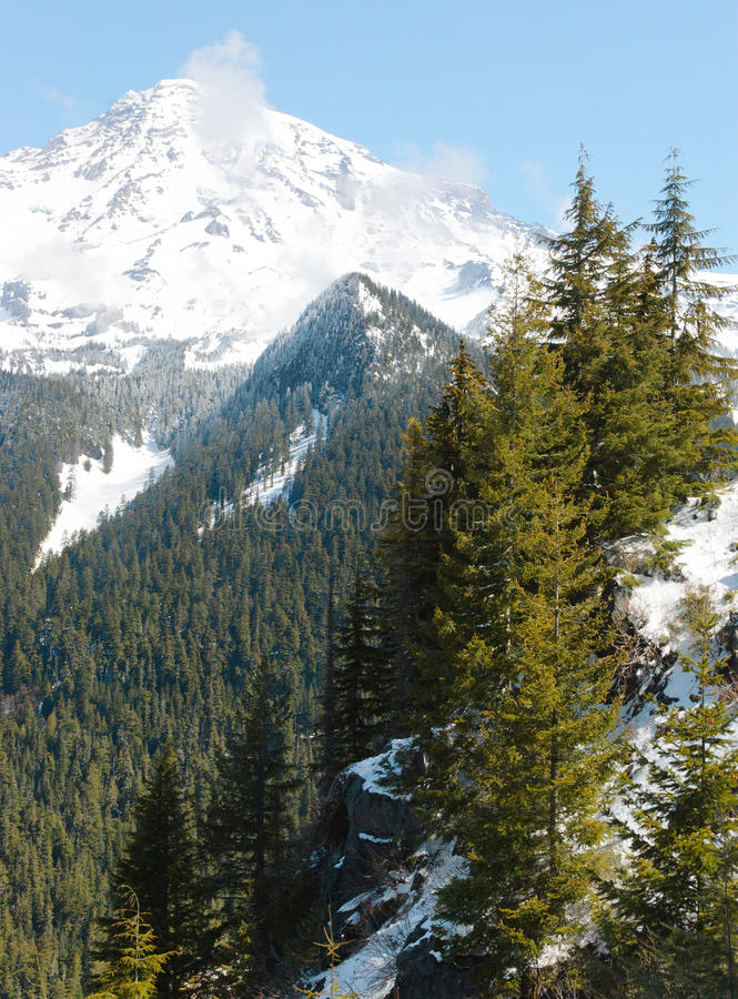 Download Mount Rainier Forests And Snow Stock Photo - Image: 21825350