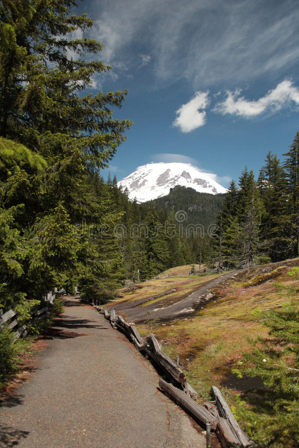 Mount Rainier Meadow stock photo
