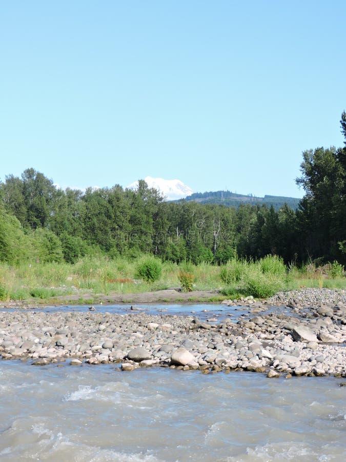Mount rainier river valley royalty free stock photos