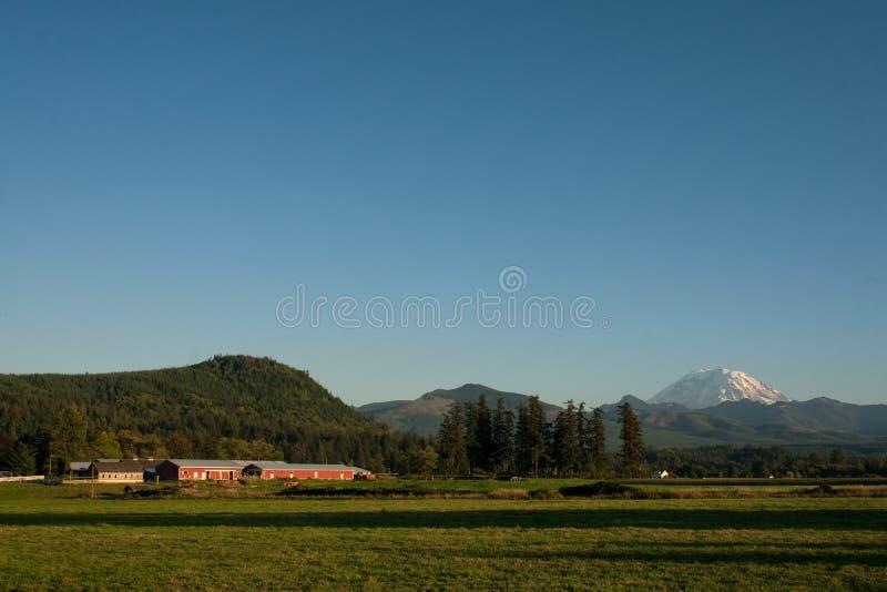 Download Mount Rainier And Rural Farm Stock Photo - Image: 11835378