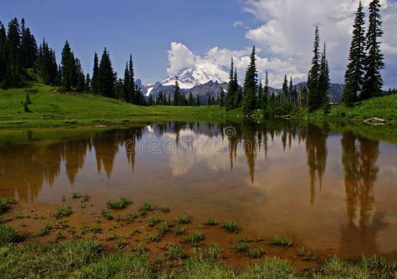 Download Mount Rainier & Upper Tipsoo Lake Stock Image - Image: 10444147
