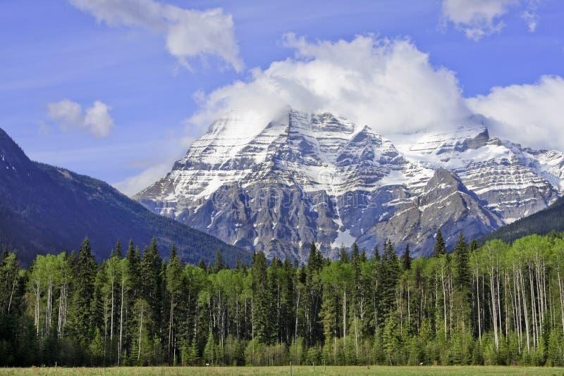 Mount Robson Stock Photos