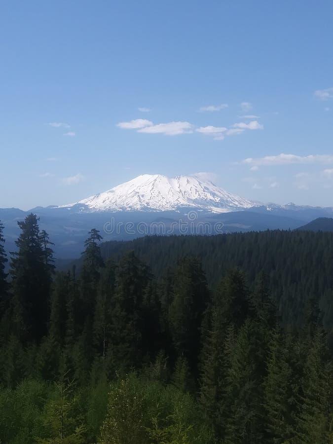 Mount Saint Helens стоковые фотографии rf