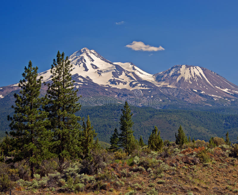 Mount Shasta, Cascade Mountains, California. Snow-capped Mt. Shasta, framed by trees and forests, in the Cascade range of mountains in northern California, is royalty free stock photo