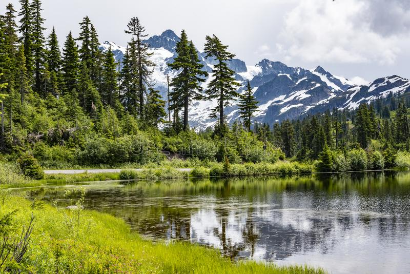 Mount Shuksan in Cascade Mountains with reflective lake. Mount Shuksan, near Mount Baker in Washington State of the Pacific Northwest, is seen rising behind lush royalty free stock photos