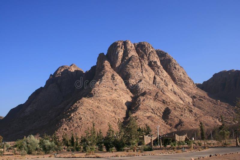 Mount Sinai Peak royalty free stock photo