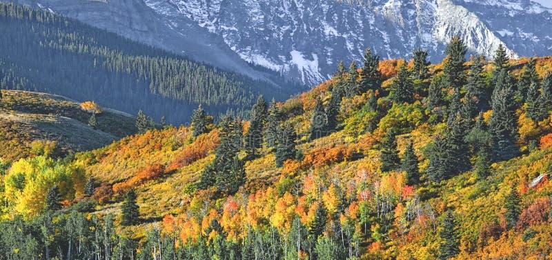 Mount Sneffel ridgeline royalty free stock images
