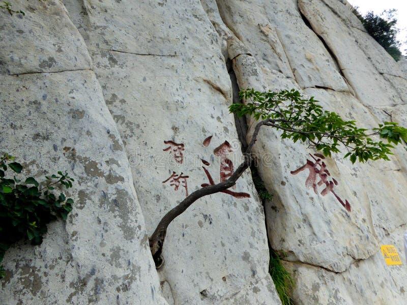 Mount Songshan hillside stock images