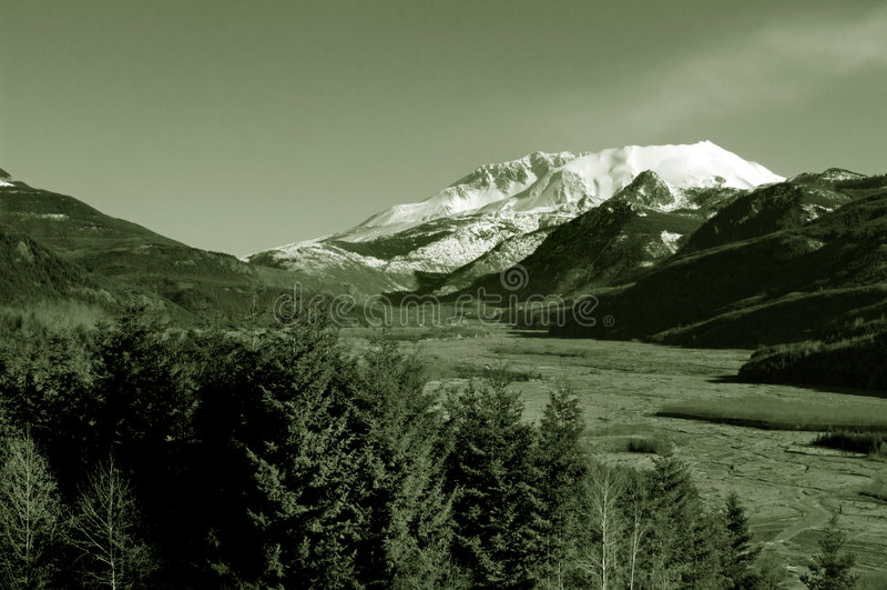 Mount St. Helen stock images
