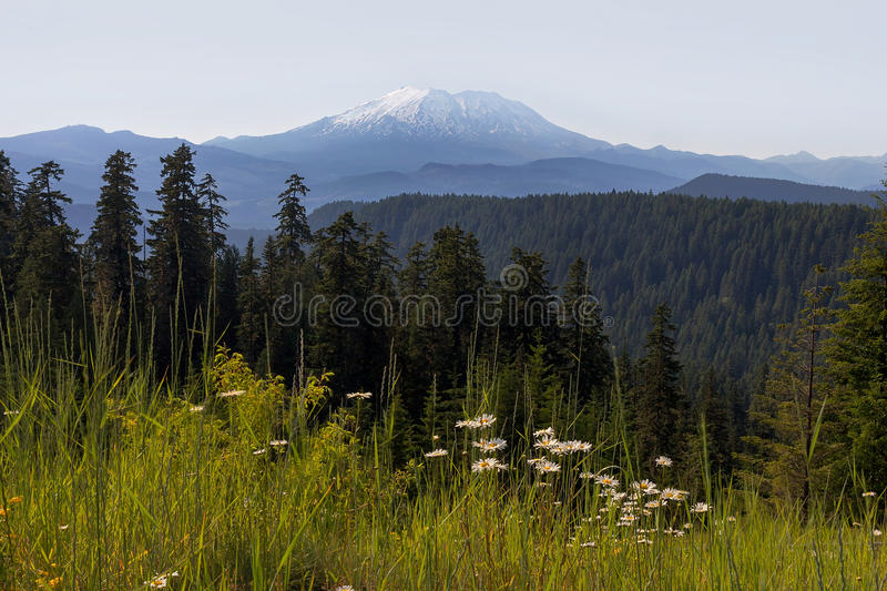 Mount St Helens in Washington State royalty free stock photography